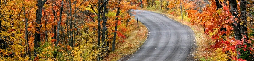 Autumn Road - Why Sellers Choose Cathy - Fairfield County Real Estate